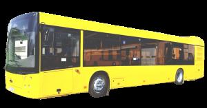 Стекло лобовое панорамное для МАЗ - 203